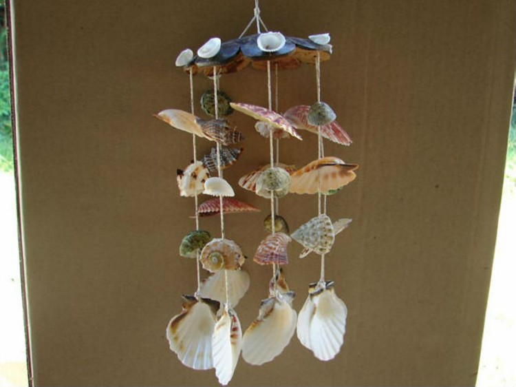 Sea Shell Hanging Ideas