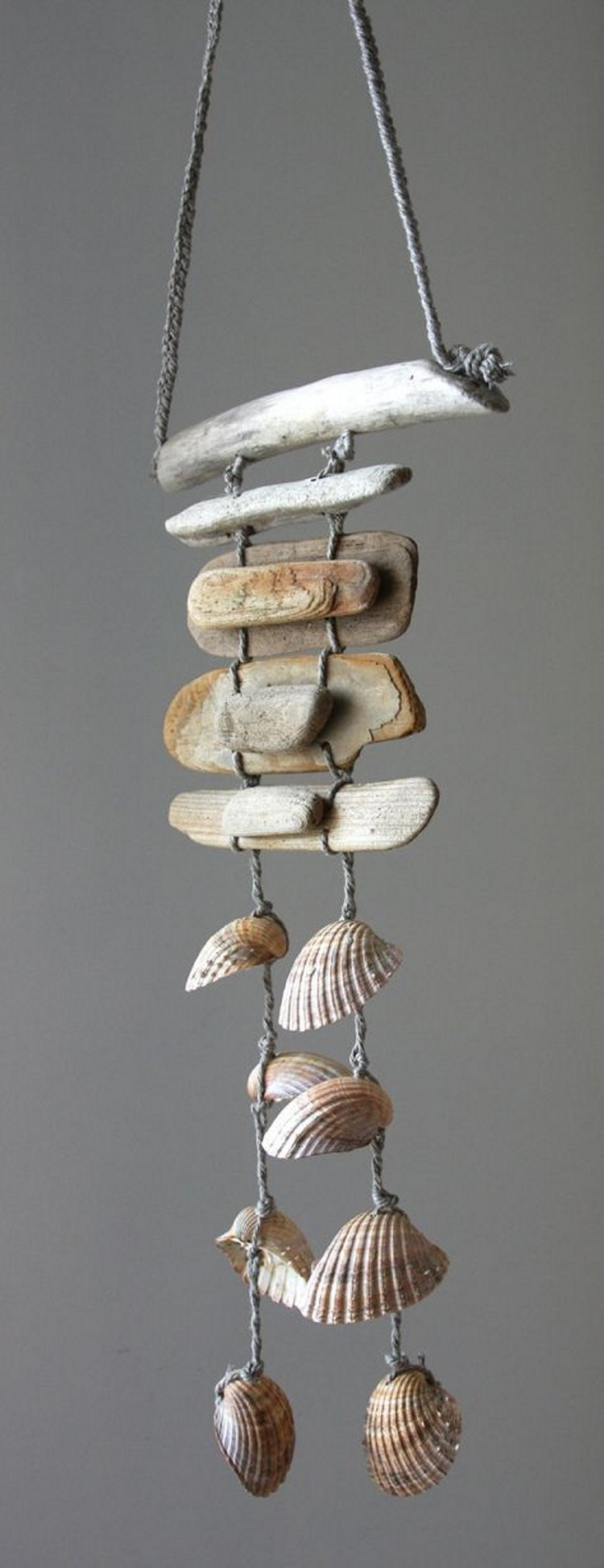 Sea Shell Hanging