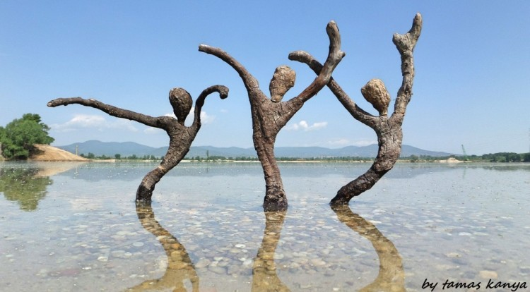Driftwood Art Designs