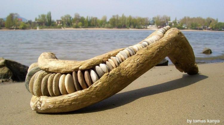 Driftwood arts
