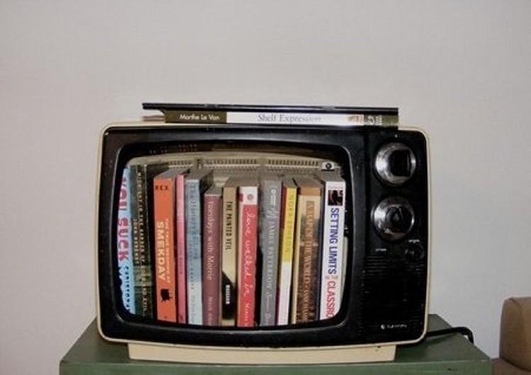 TV Upcycled Bookshelves