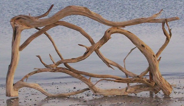 driftwood crafting