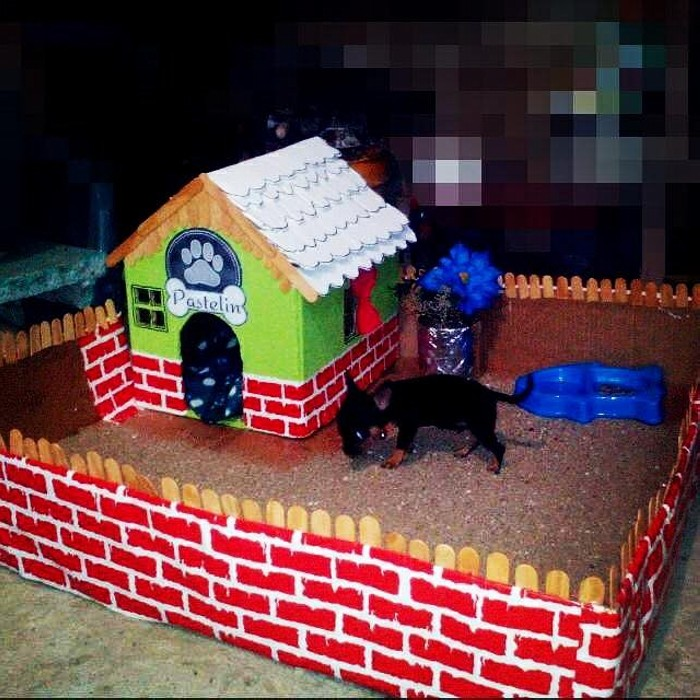 Cardboard Dog House Diy Upcycle Art