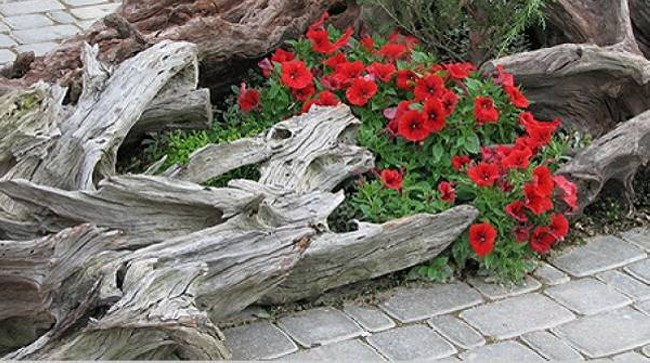 Driftwood Garden Decor