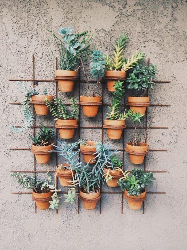Ideas For Planting Succulents: Decorating Ideas With Plants