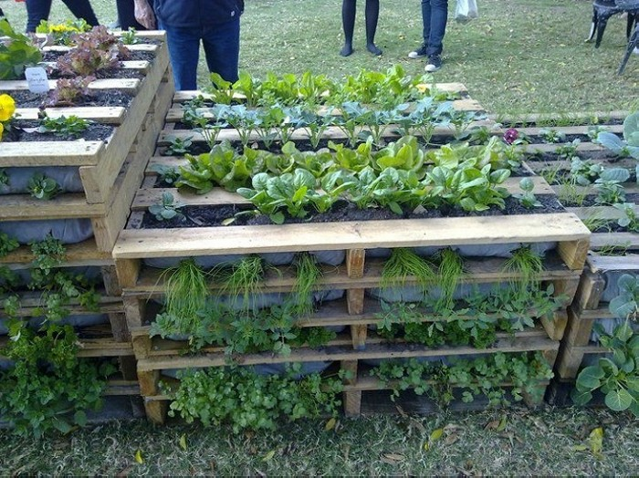 Use Pallets In Your Garden