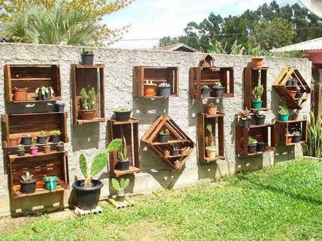 Wall Planting Ideas