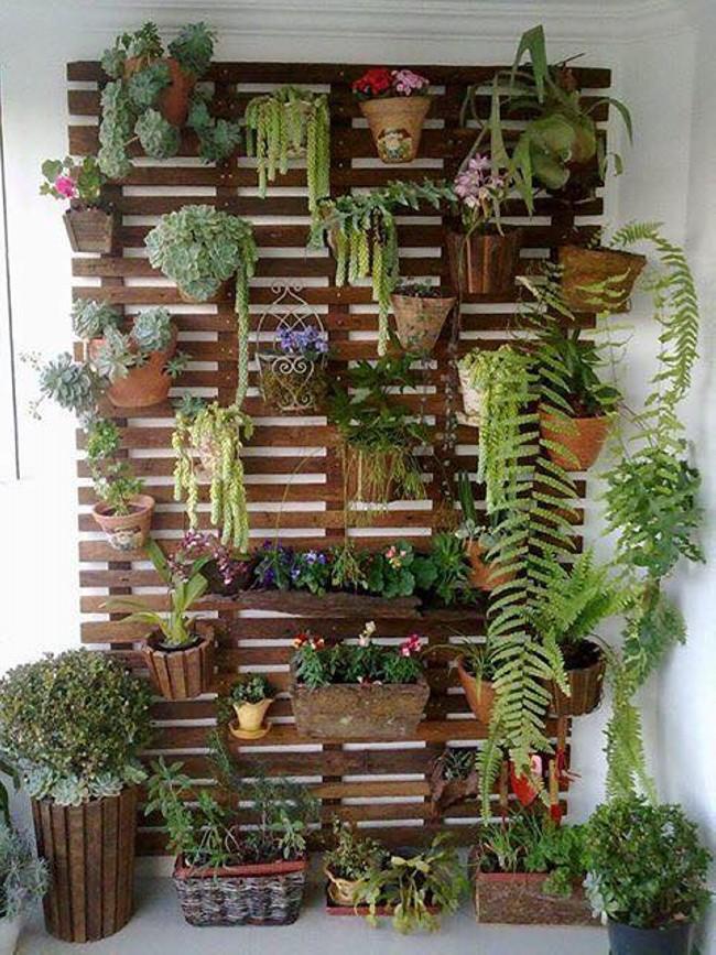 Wall Wood Planting Ideas