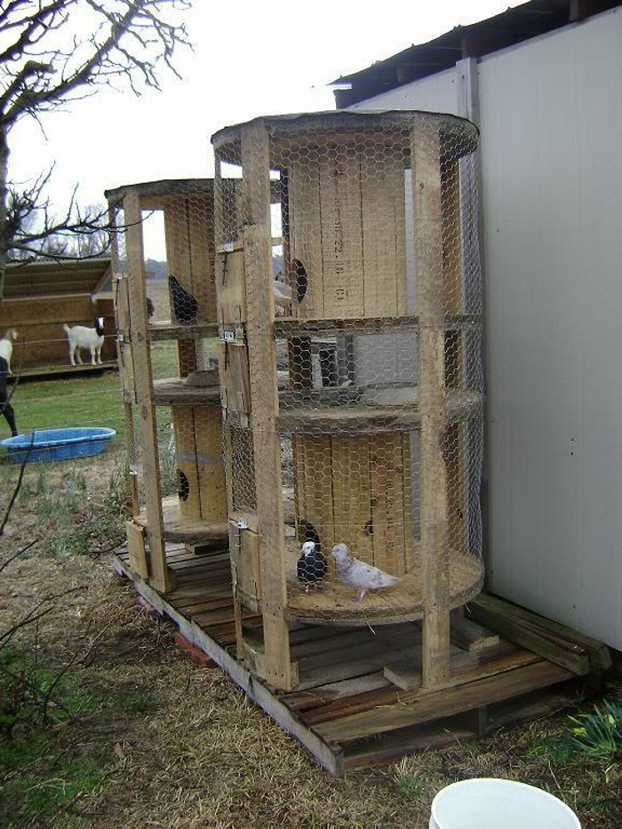 Wooden Cable Reel Birds Cage