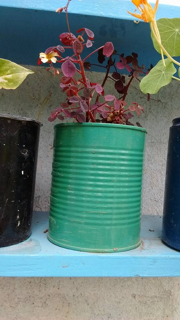 DIY Pots Ideas