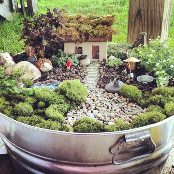 Ideas For Mini Gardens