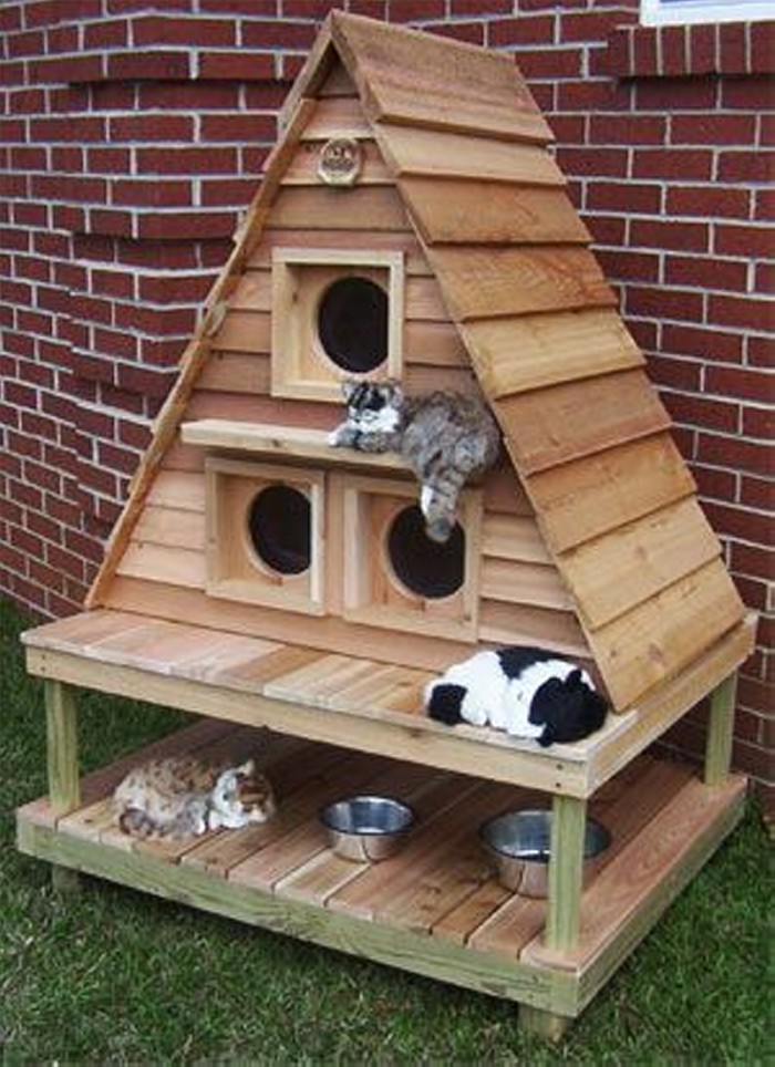 Recycled Old Pallets Cat House