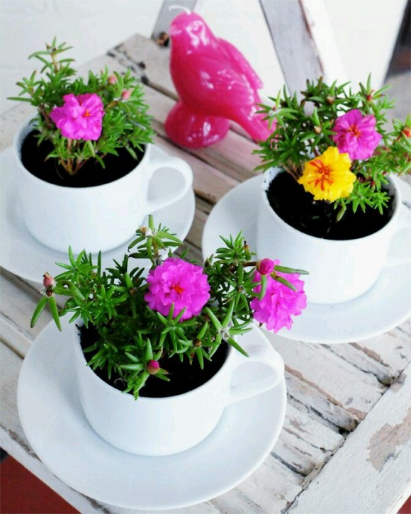 Upcycled Planter Pots Cups