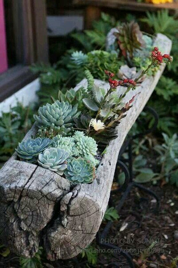 Upcycled Planter Pots Garden