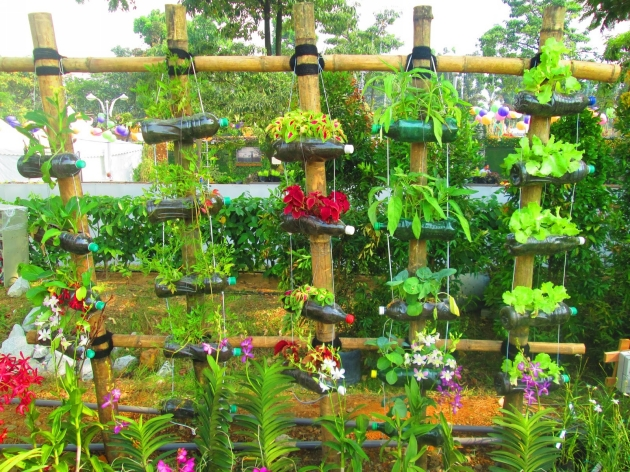 Creative Recycling Ideas Plastic Bottles for Garden