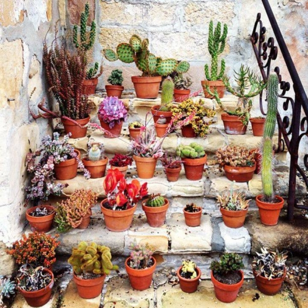 Small Pots Decor Plan