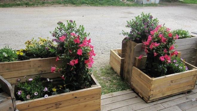 Pallets Planters