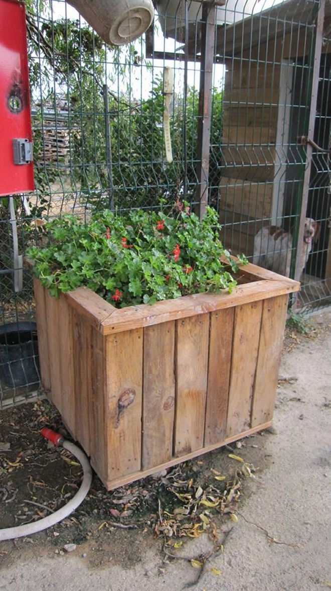 Pallets upcycled planter ideas upcycle art for Recycle pallets as garden planters
