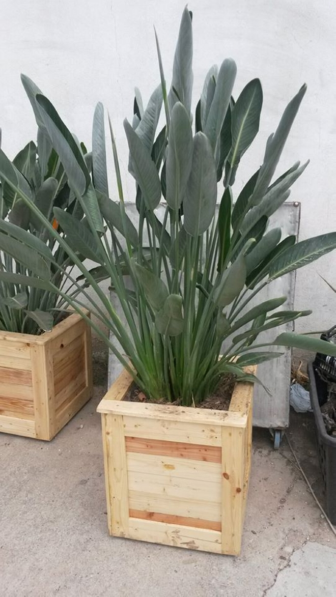 Pallets Upcycled Planters