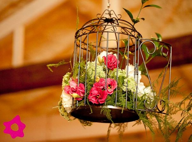 Cage Decor Ideas