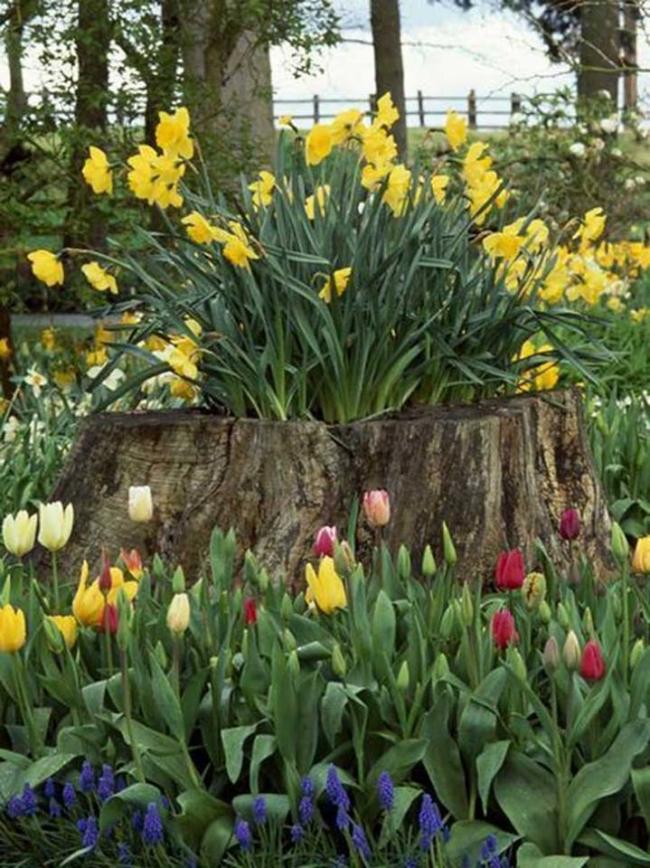 Log Garden Planter
