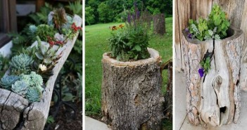 Reused Log Planter Ideas