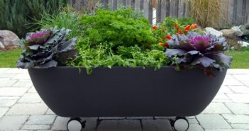 Old Bathtub Planter on Wheels