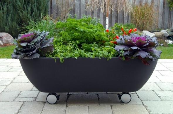 Old Bathtub Planter on Wheels
