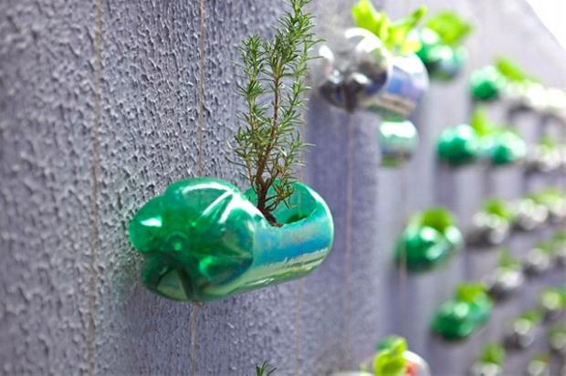 Pet Bottles Planters