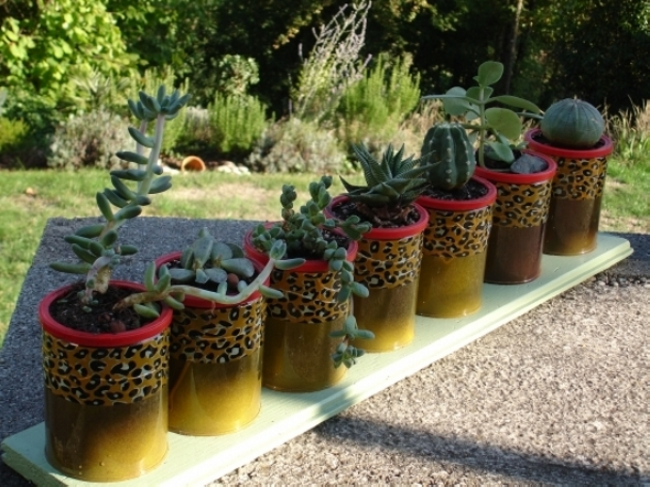 Garden Ideas with Cans