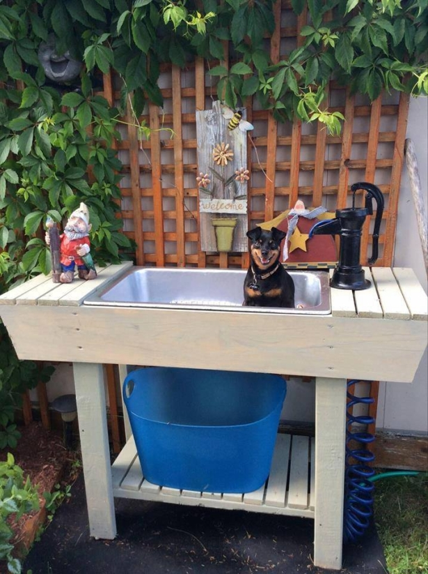 Pallet Pet Outdoor Washing Station