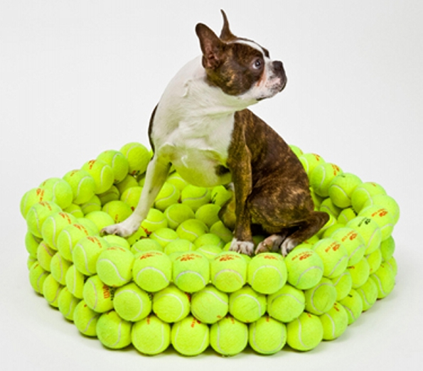 Tennis Ball Cat Bed