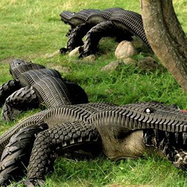 used tires made alligator