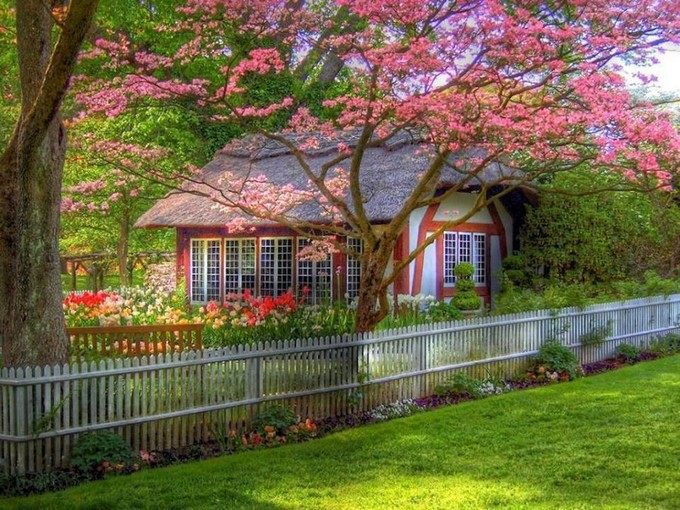 Amazing Fairytale Cottage