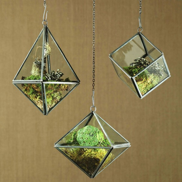 Plant Grow Geometric Hanging Terrariums