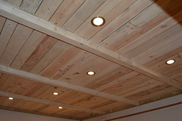 pallet roof