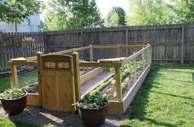 wood pallet raised garden