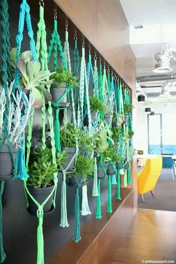 decor with hanging plants