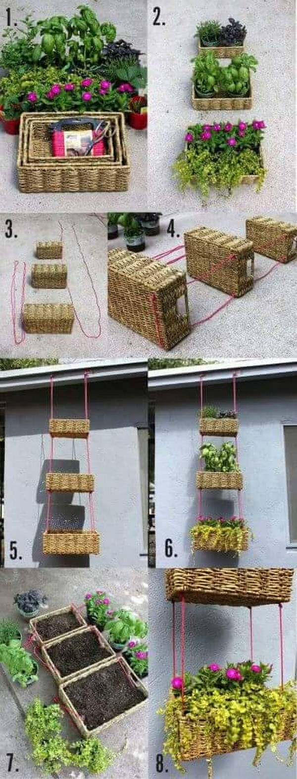 diy hanging plants