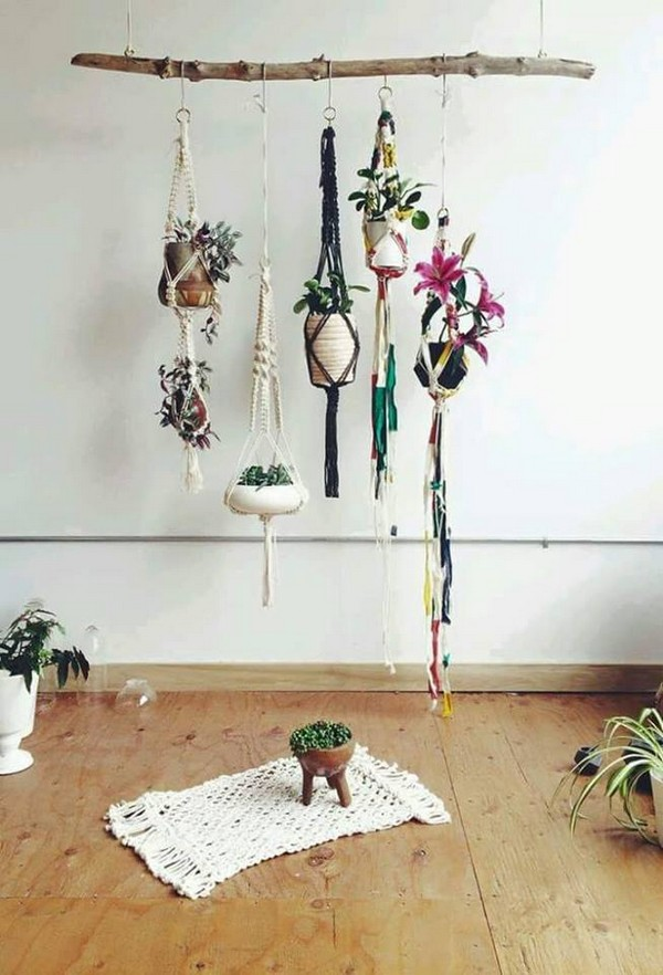 room decor with hanging plants