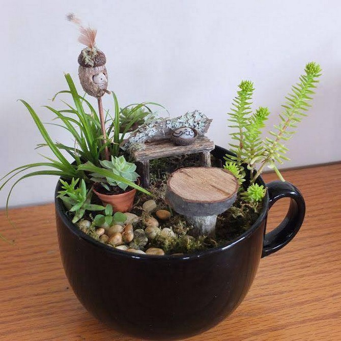 little garden in coffee cup