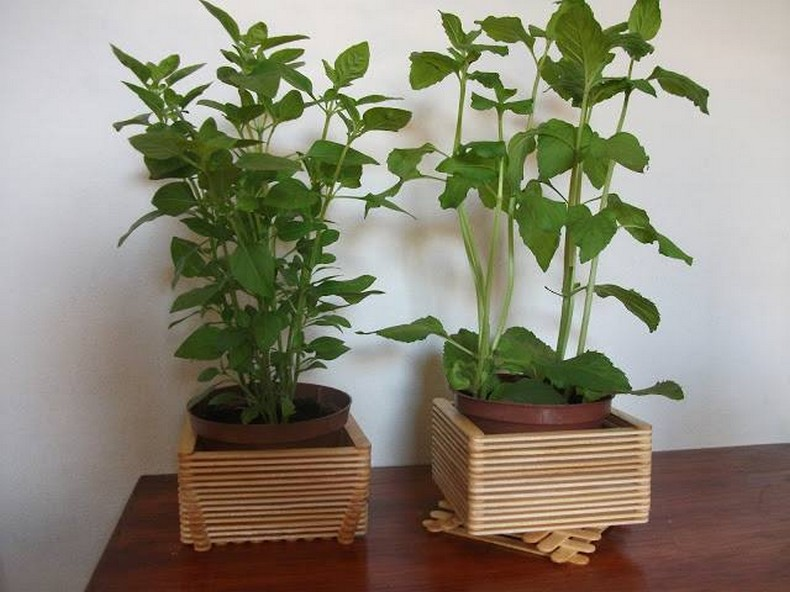 popsicle sticks little planters