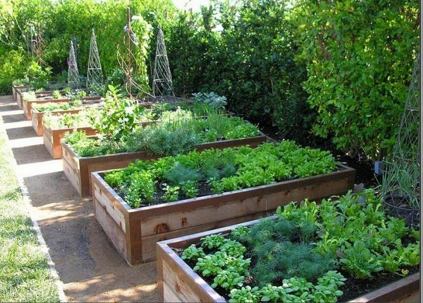 raised garden beds idea