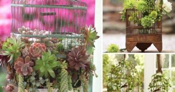 Cage Planters Decoration